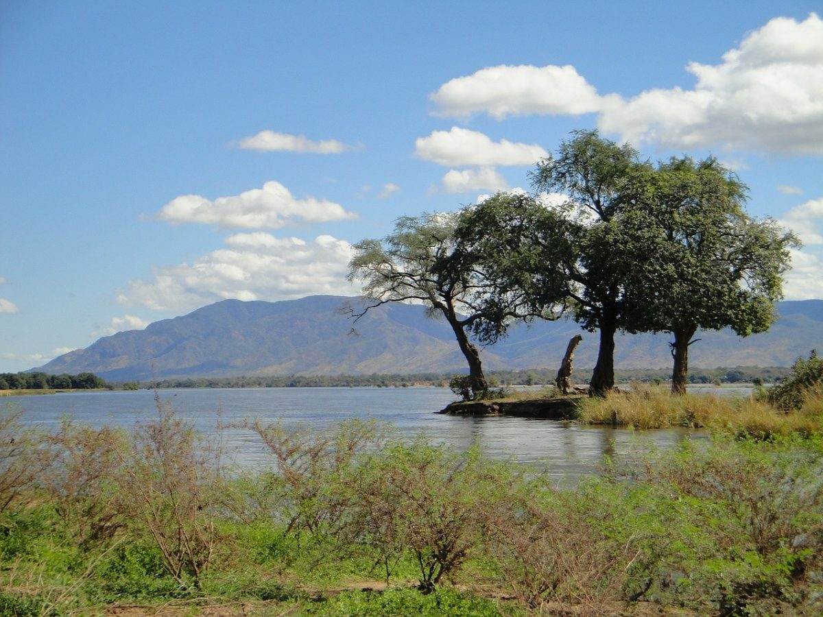 Zambia scene